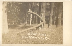 At the Forge - Wooded Area