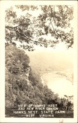 View of Hawks Nest and New River Canyon, Hawks Nest State Park