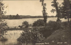 Loon Island at Crawford Pond