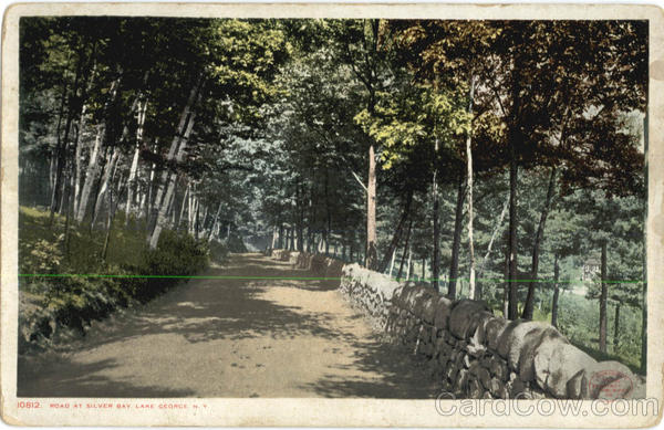 Road At Silver Bay, Lake George New York