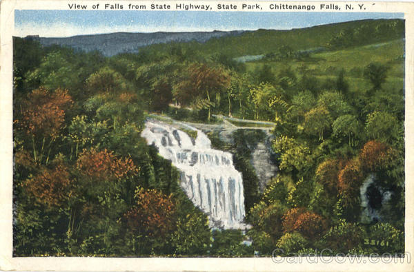 View Of Falls From State Highway, State Park Chittenango Falls New York