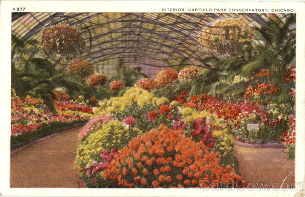 Interior Garfield Park Conservatory Chicago Illinois