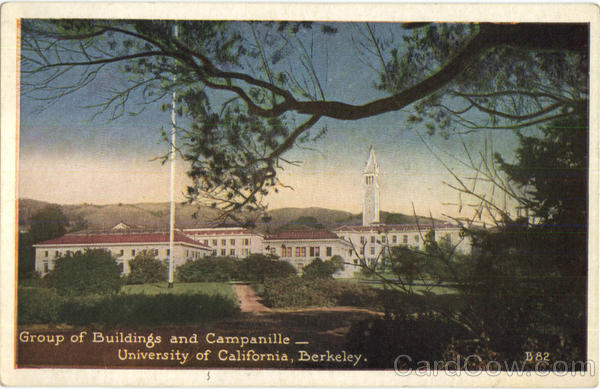 Group Of Buildings And Campanille, University of California Berkeley