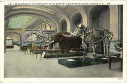 Hall Of Vertebrate Paleontology