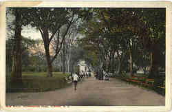 Elm Walk , Washington Park