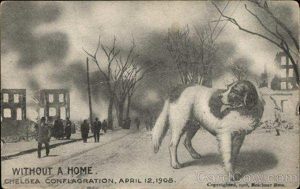 Without a Home, Chelsea Conflagration, April 12, 1908 Massachusetts