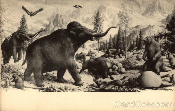 Yale Peabody Natural History