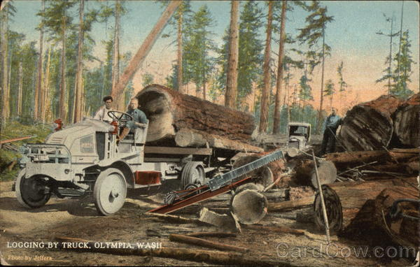 Logging by Truck Olympia Washington