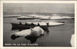 Among the Ice Floes in Alaska