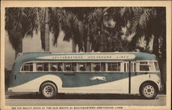 See the Beauty Spots of the Old South by Southeastern Greyhound Lines