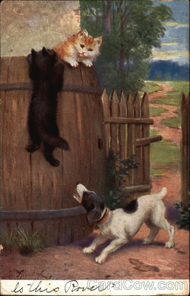 Barking Dog Chasing Two Kittens into a Barrel Dogs