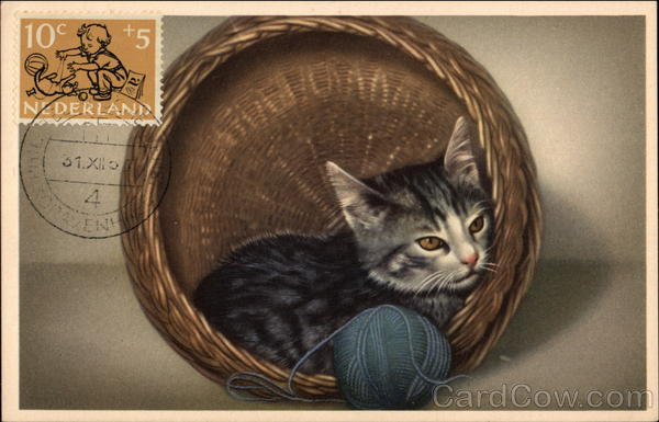Gray Kitten Curled in a Wicker Basket with Blue Ball of Yarn