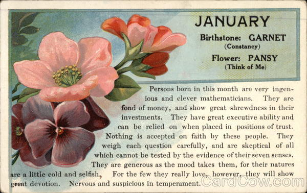 January Birthstone Garnet Constancy Flower Pansy