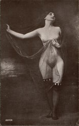Nude Woman with Sheer Veil