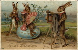 Easter Greetings with Three Bunnies in a Photography Scene