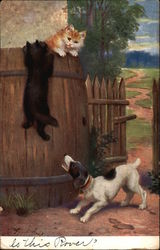 Barking Dog Chasing Two Kittens into a Barrel
