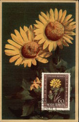Two Large Yellow Flowers with Coordinating Postage Stamp