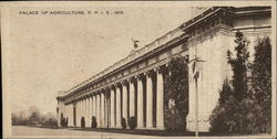 Palace of Agriculture, P.P.I.E., 1915