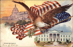 Eagle and American Flag, White House and Capitol