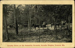 Arcadia Drive on the Assembly Grounds, Arcadia Heights