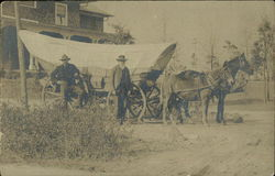 Horse and Mule Pulling A Covered Wagon