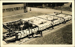 F -1 Company Clothesline - Farragut Naval Training Station