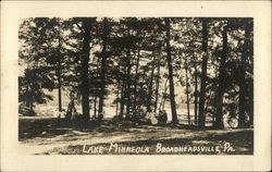 Lake Minneola Postcard