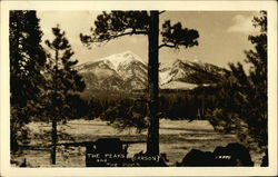 The Peaks and the Pines (Carson)