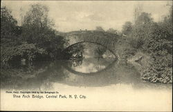 Vine Arch Bridge, Central Park