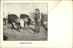 Breaking the Cows