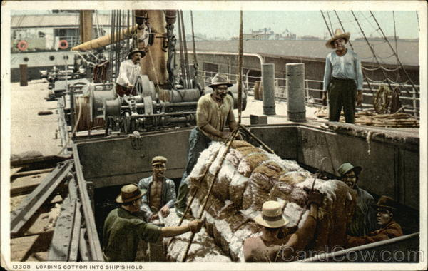 Loading Cotton into Ship's Hold Black Americana