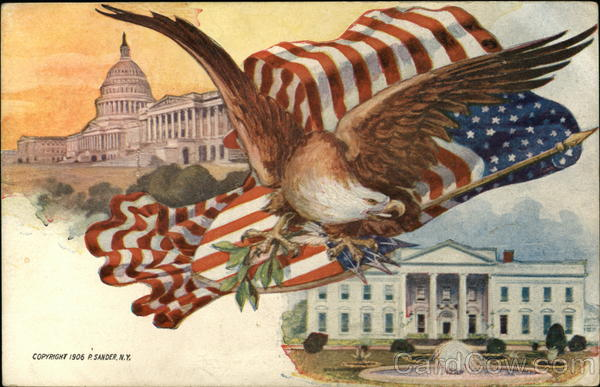 Eagle and American Flag, White House and Capitol Patriotic