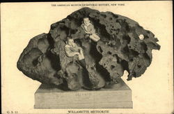 Willamette Meteorite, The American Museum of Natural History, New York