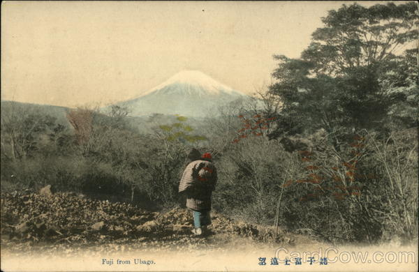 View of Mount Fuji from Ubago Japan