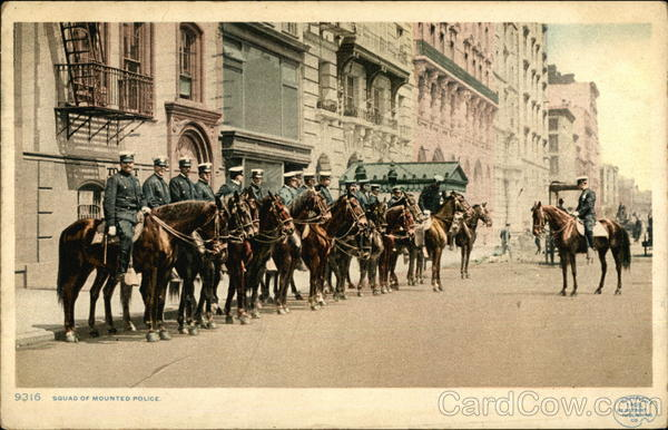 Squad of mounted police