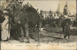 223 - Tunisie - Chameau et Chamelier