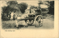 Irish Donkey Cart