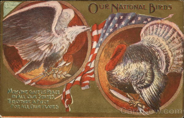 Our National Birds - Bald Eagle and Turkey Patriotic