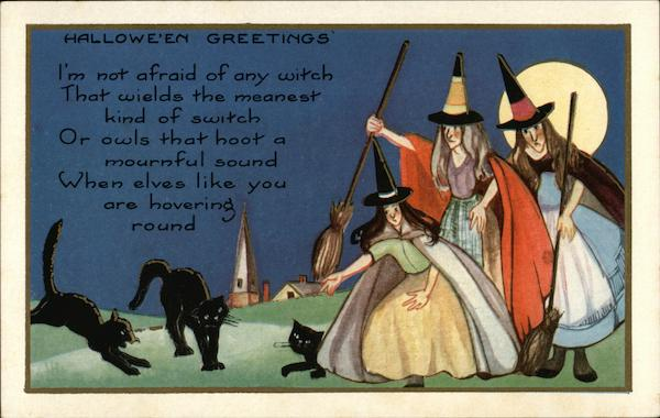 Halloween Greetings, I'm Not Afraid of any Witch That Wields the Meanest Kind of Switch