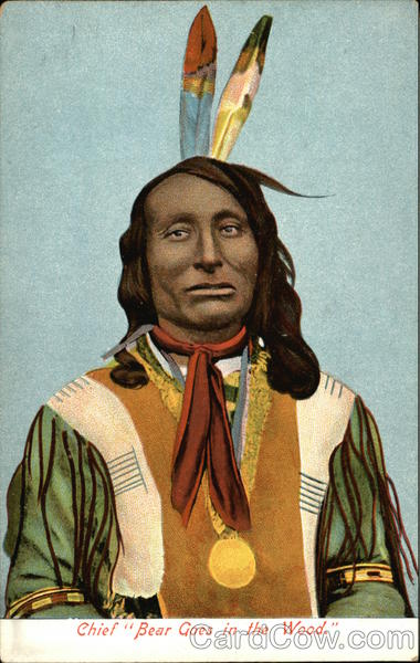 Chief Bear Goes in the Wood Native Americana