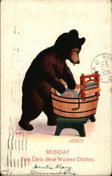 Monday This Little Bear Washes Clothes