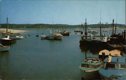 A Variety of Boats at Wellfleet