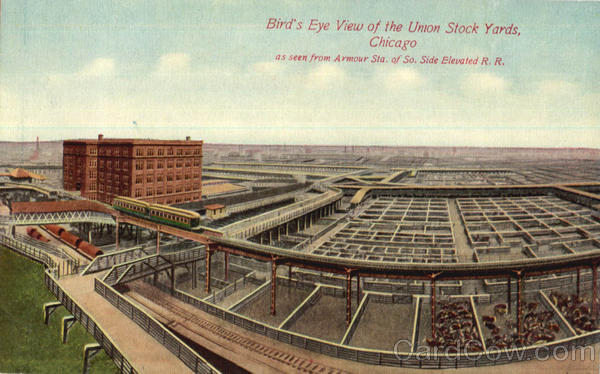 Bird's Eye View Of The Union Stock Yards Chicago Illinois