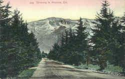 Driveway In Altadena