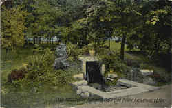 Galloway Springs , Overton Park