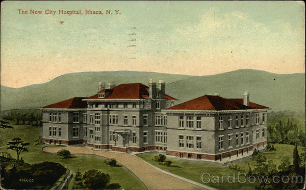The New City Hospital Ithaca New York