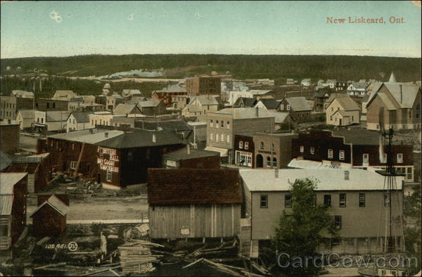 View of New Liskcard Canada Ontario