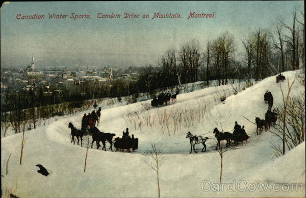Canadian Winter Sports, Tandem Drive on Mountain Montreal Canada