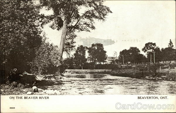 On the Beaver River Beaverton Canada Ontario