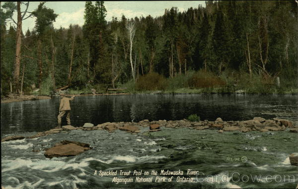A Speckled Trout Pool on the Madawaska River Algonquin National Park Canada